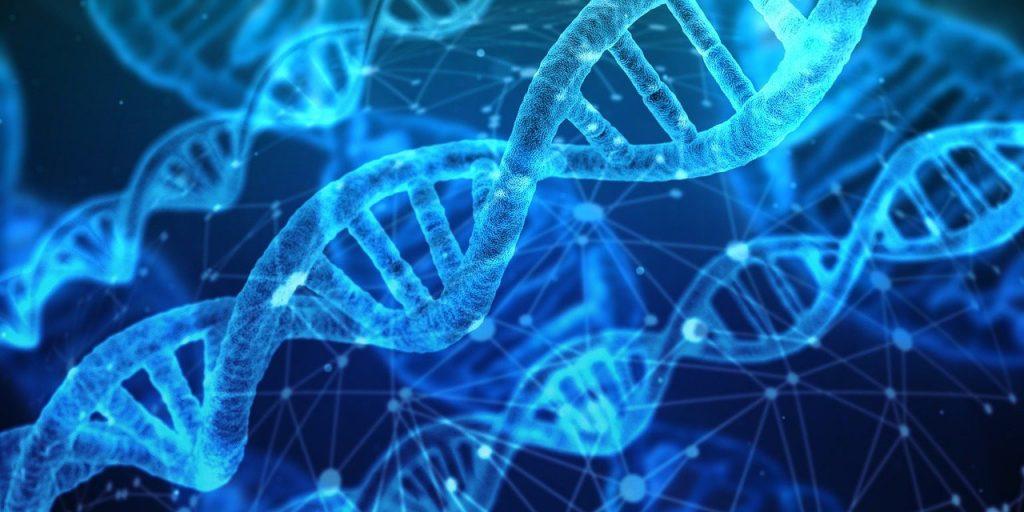 Die DNA und dein göttliches BewusstSEIN